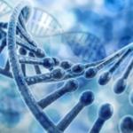 緊張やイライラが不思議なほどなくなる。困った感情に影響している遺伝子をオフする療法